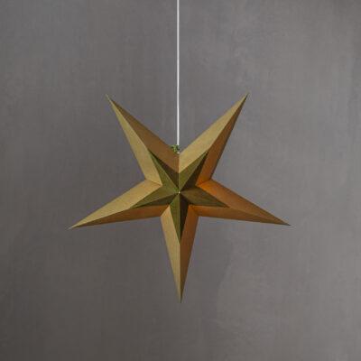 Popierinė žvaigždė DIVA GREEN 60CM